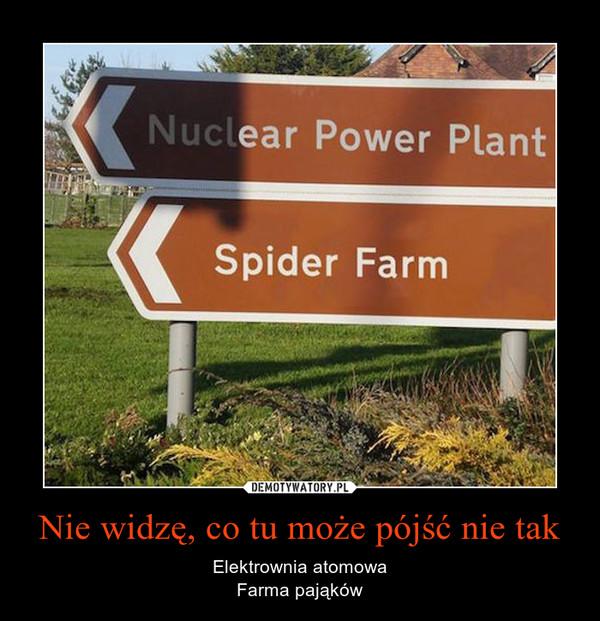 Nie widzę, co tu może pójść nie tak – Elektrownia atomowaFarma pająków