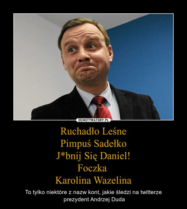 Ruchadło LeśnePimpuś SadełkoJ*bnij Się Daniel!Foczka Karolina Wazelina – To tylko niektóre z nazw kont, jakie śledzi na twitterze prezydent Andrzej Duda