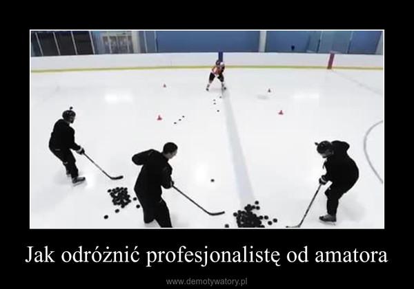 Jak odróżnić profesjonalistę od amatora –