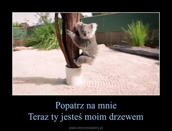 Popatrz na mnieTeraz ty jesteś moim drzewem –