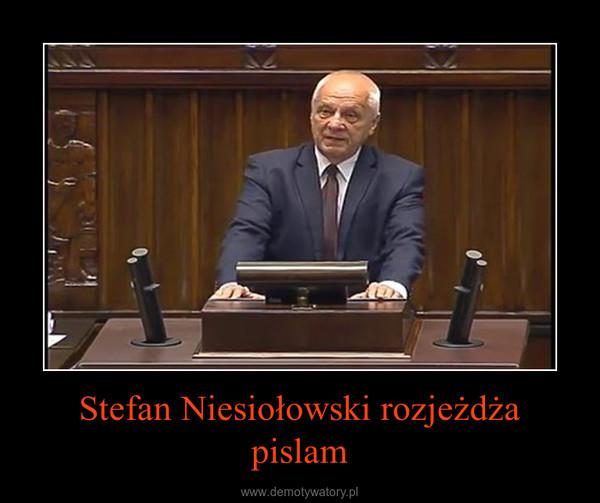 Stefan Niesiołowski rozjeżdża pislam –