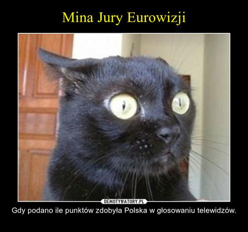 Mina Jury Eurowizji