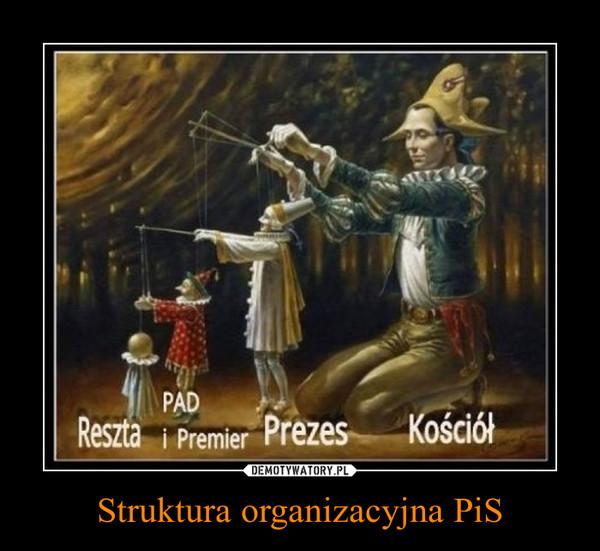 Struktura organizacyjna PiS –