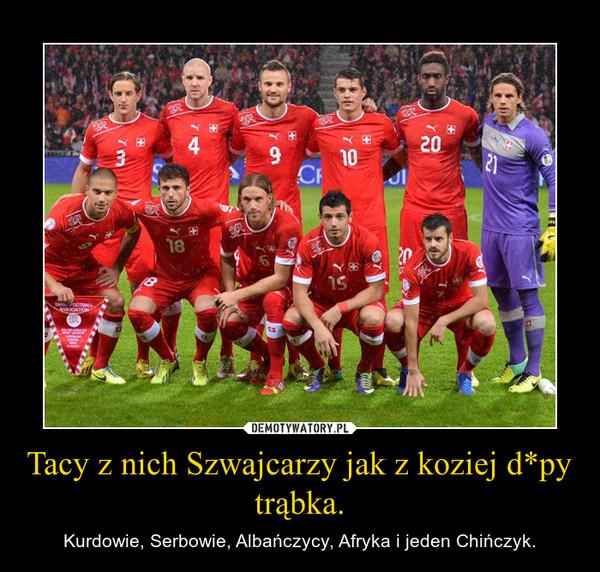 Tacy z nich Szwajcarzy jak z koziej d*py trąbka. – Kurdowie, Serbowie, Albańczycy, Afryka i jeden Chińczyk.