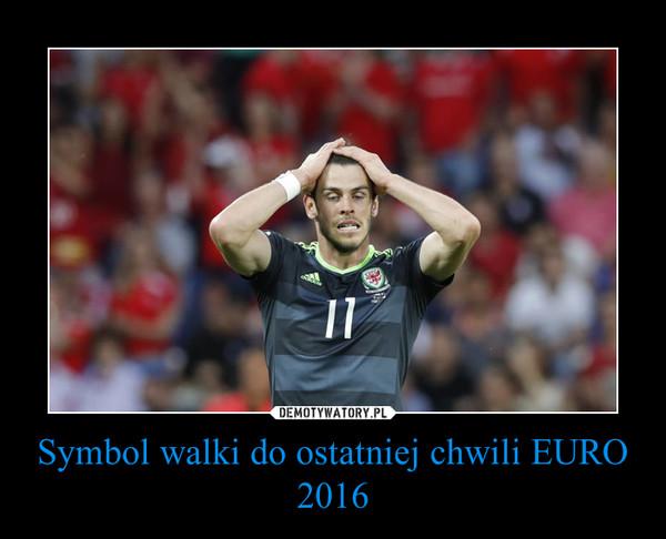 Symbol walki do ostatniej chwili EURO 2016 –