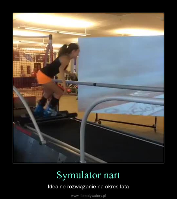 Symulator nart – Idealne rozwiązanie na okres lata
