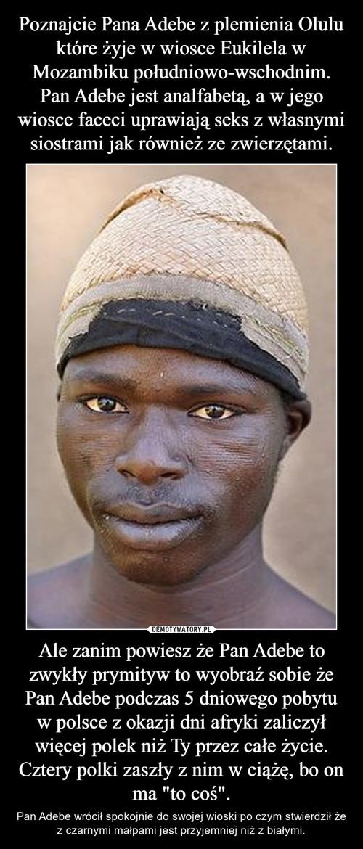 """Poznajcie Pana Adebe z plemienia Olulu które żyje w wiosce Eukilela w Mozambiku południowo-wschodnim. Pan Adebe jest analfabetą, a w jego wiosce faceci uprawiają seks z własnymi siostrami jak również ze zwierzętami. Ale zanim powiesz że Pan Adebe to zwykły prymityw to wyobraź sobie że Pan Adebe podczas 5 dniowego pobytu w polsce z okazji dni afryki zaliczył więcej polek niż Ty przez całe życie. Cztery polki zaszły z nim w ciążę, bo on ma """"to coś""""."""