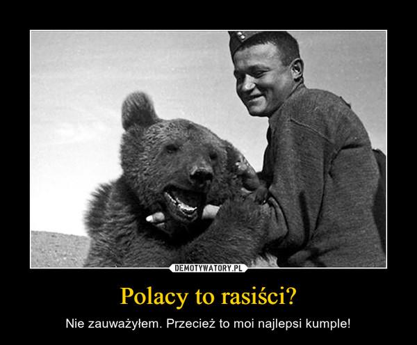 Polacy to rasiści? – Nie zauważyłem. Przecież to moi najlepsi kumple!