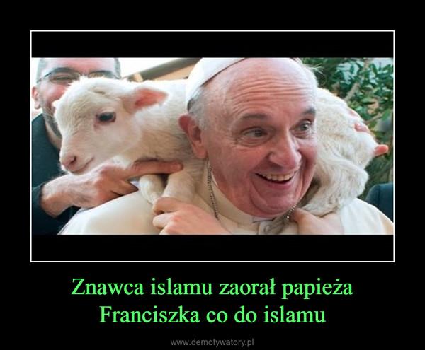 Znawca islamu zaorał papieża Franciszka co do islamu –
