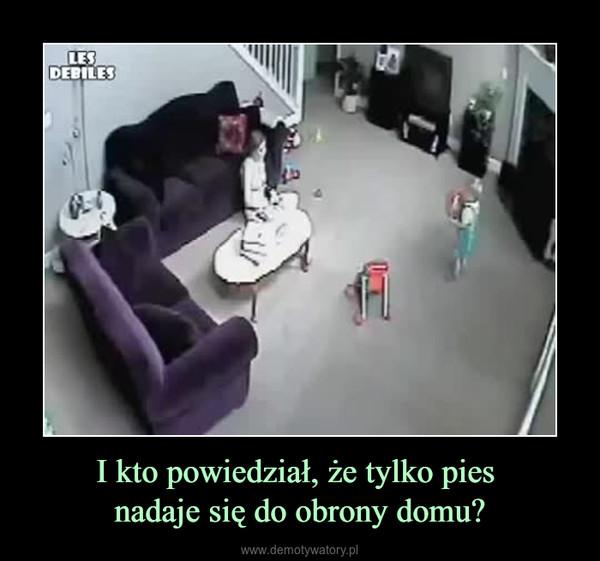 I kto powiedział, że tylko pies nadaje się do obrony domu? –