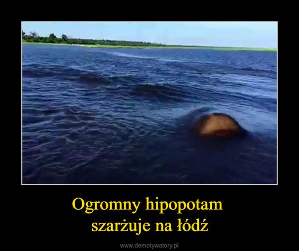 Ogromny hipopotam szarżuje na łódź –