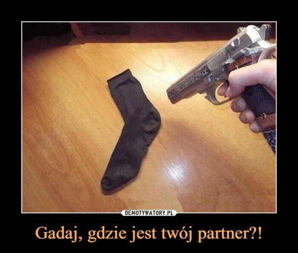 Gadaj, gdzie jest twój partner?! –
