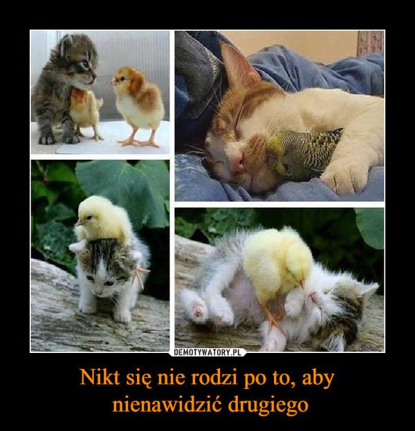 Nikt się nie rodzi po to, aby nienawidzić drugiego –