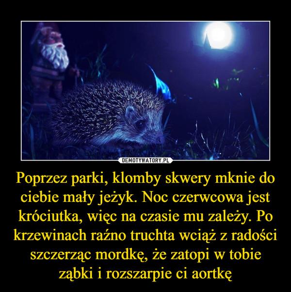 Poprzez parki, klomby skwery mknie do ciebie mały jeżyk. Noc czerwcowa jest króciutka, więc na czasie mu zależy. Po krzewinach raźno truchta wciąż z radości szczerząc mordkę, że zatopi w tobie ząbki i rozszarpie ci aortkę –