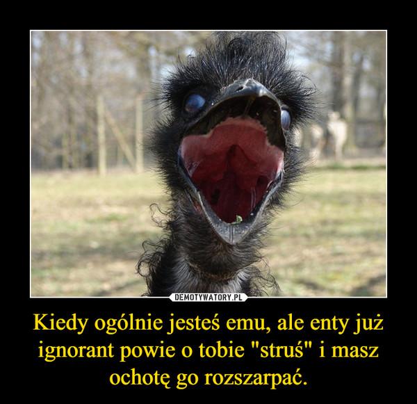 """Kiedy ogólnie jesteś emu, ale enty już ignorant powie o tobie """"struś"""" i masz ochotę go rozszarpać. –"""