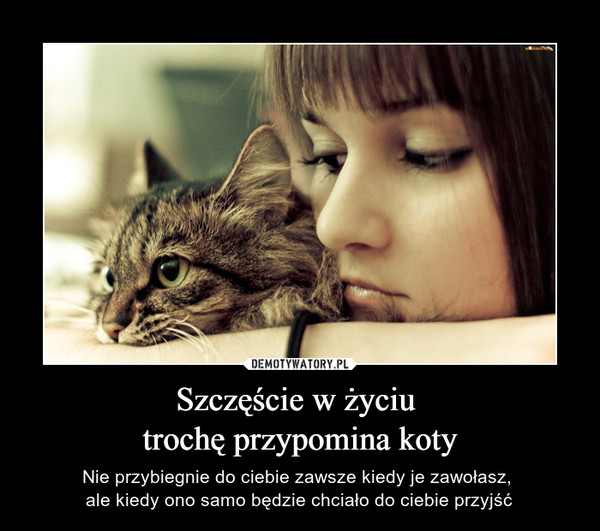 Szczęście w życiu trochę przypomina koty – Nie przybiegnie do ciebie zawsze kiedy je zawołasz, ale kiedy ono samo będzie chciało do ciebie przyjść