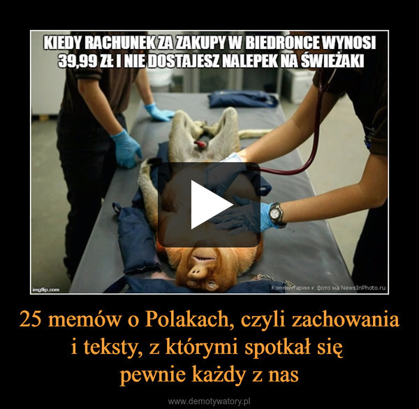25 memów o Polakach, czyli zachowania i teksty, z którymi spotkał się pewnie każdy z nas –