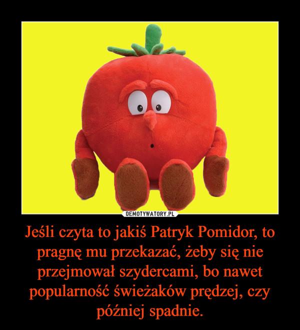 Jeśli czyta to jakiś Patryk Pomidor, to pragnę mu przekazać, żeby się nie przejmował szydercami, bo nawet popularność świeżaków prędzej, czy później spadnie. –