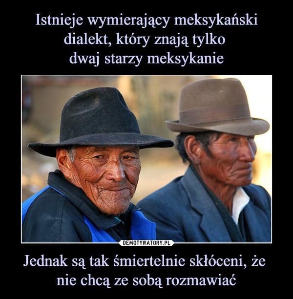 Jednak są tak śmiertelnie skłóceni, że nie chcą ze sobą rozmawiać –
