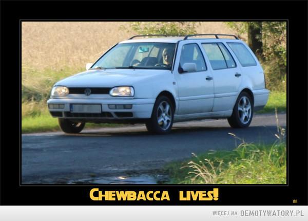 Chewbacca żyje! –