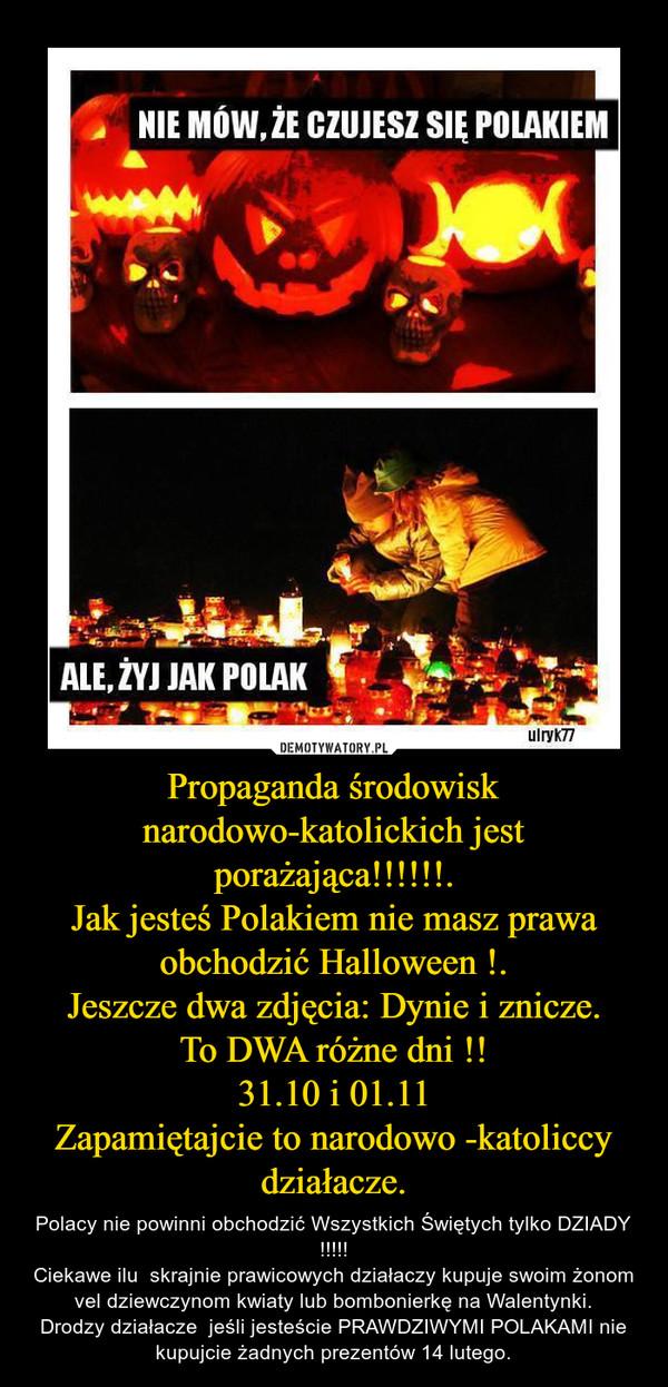 Propaganda środowisk narodowo-katolickich jest porażająca!!!!!!.Jak jesteś Polakiem nie masz prawa obchodzić Halloween !.Jeszcze dwa zdjęcia: Dynie i znicze.To DWA różne dni !!31.10 i 01.11Zapamiętajcie to narodowo -katoliccy działacze. – Polacy nie powinni obchodzić Wszystkich Świętych tylko DZIADY !!!!!Ciekawe ilu  skrajnie prawicowych działaczy kupuje swoim żonom vel dziewczynom kwiaty lub bombonierkę na Walentynki.Drodzy działacze  jeśli jesteście PRAWDZIWYMI POLAKAMI nie kupujcie żadnych prezentów 14 lutego.