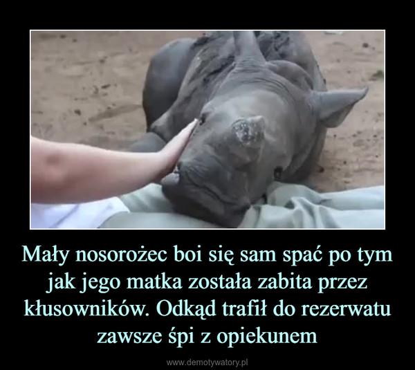 Mały nosorożec boi się sam spać po tym jak jego matka została zabita przez kłusowników. Odkąd trafił do rezerwatu zawsze śpi z opiekunem –
