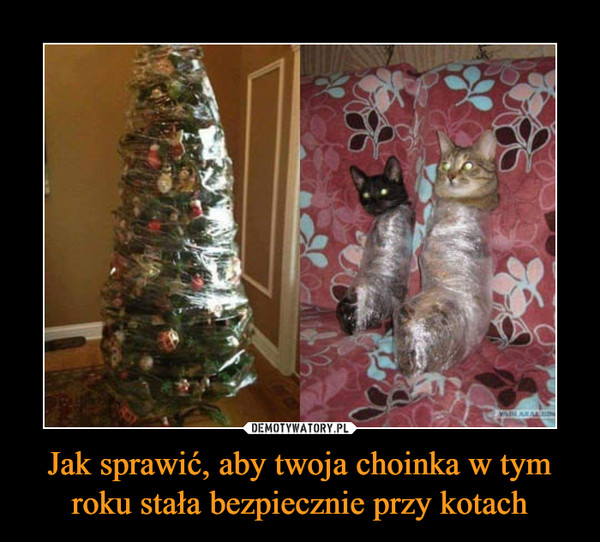 Jak sprawić, aby twoja choinka w tym roku stała bezpiecznie przy kotach –