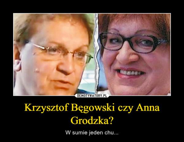 Krzysztof Bęgowski czy Anna Grodzka? – W sumie jeden chu...