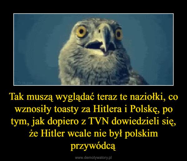 Tak muszą wyglądać teraz te naziołki, co wznosiły toasty za Hitlera i Polskę, po tym, jak dopiero z TVN dowiedzieli się, że Hitler wcale nie był polskim przywódcą –