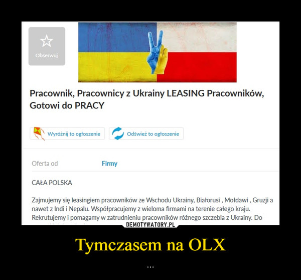 Tymczasem na OLX – ...