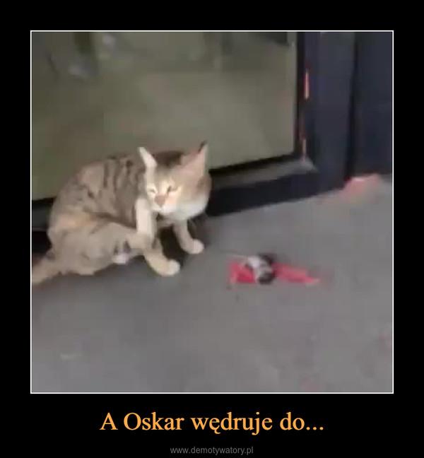 A Oskar wędruje do... –