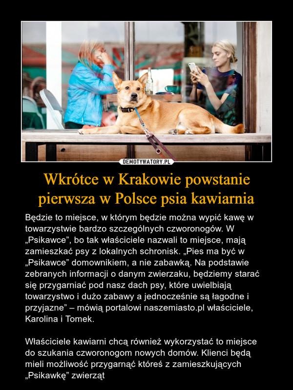 """Wkrótce w Krakowie powstanie pierwsza w Polsce psia kawiarnia – Będzie to miejsce, w którym będzie można wypić kawę w towarzystwie bardzo szczególnych czworonogów. W """"Psikawce"""", bo tak właściciele nazwali to miejsce, mają zamieszkać psy z lokalnych schronisk. """"Pies ma być w """"Psikawce"""" domownikiem, a nie zabawką. Na podstawie zebranych informacji o danym zwierzaku, będziemy starać się przygarniać pod nasz dach psy, które uwielbiają towarzystwo i dużo zabawy a jednocześnie są łagodne i przyjazne"""" – mówią portalowi naszemiasto.pl właściciele, Karolina i Tomek.Właściciele kawiarni chcą również wykorzystać to miejsce do szukania czworonogom nowych domów. Klienci będą mieli możliwość przygarnąć któreś z zamieszkujących """"Psikawkę"""" zwierząt"""