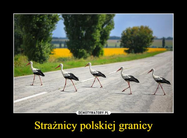 Strażnicy polskiej granicy –
