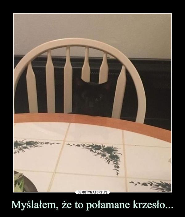 Myślałem, że to połamane krzesło... –