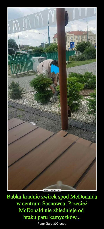 Babka kradnie żwirek spod McDonalda w centrum Sosnowca. Przecież McDonald nie zbiednieje od braku paru kamyczków... – Pomyślało 300 osób