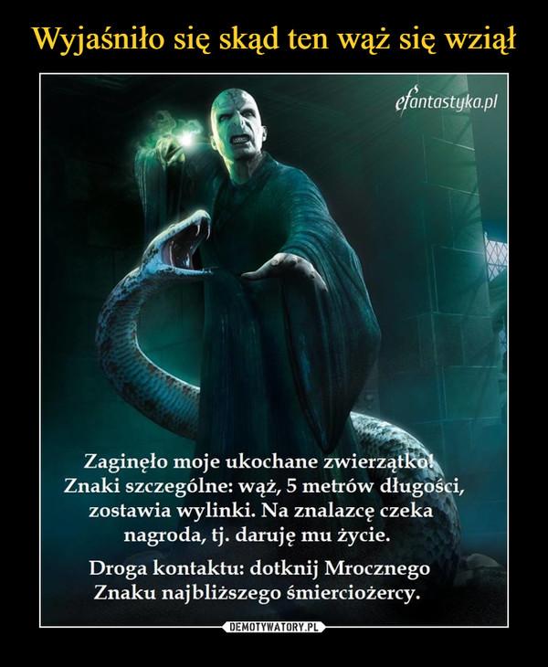–  Zaginęło moje ukochane zwierzątko Znaki szczególne: wąż, 5 metrów długości, zostawia wylinki. Na znalazcę czeka nagroda, tj. daruję mu życie. Droga kontaktu: dotknij Mrocznego Znaku najbliższego śmierciożercy.