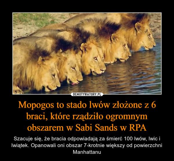 Mopogos to stado lwów złożone z 6 braci, które rządziło ogromnym obszarem w Sabi Sands w RPA – Szacuje się, że bracia odpowiadają za śmierć 100 lwów, lwic i lwiątek. Opanowali oni obszar 7-krotnie większy od powierzchni Manhattanu