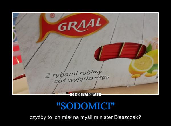 """""""SODOMICI"""" – czyżby to ich miał na myśli minister Błaszczak?"""