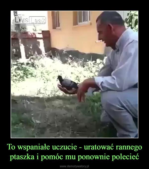 To wspaniałe uczucie - uratować rannego ptaszka i pomóc mu ponownie polecieć –