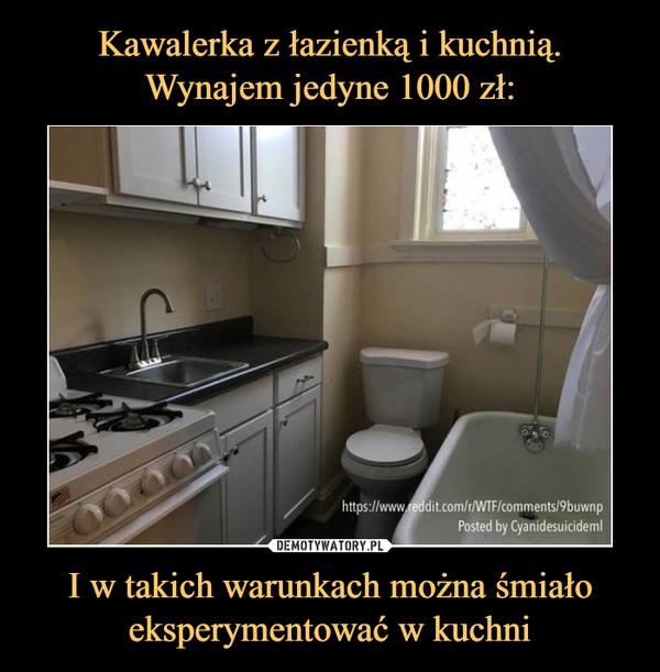 I w takich warunkach można śmiało eksperymentować w kuchni –