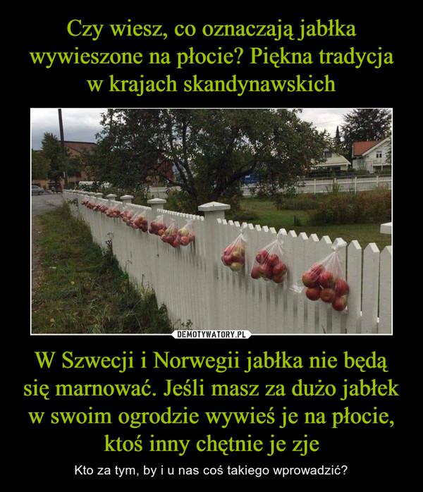 W Szwecji i Norwegii jabłka nie będą się marnować. Jeśli masz za dużo jabłek w swoim ogrodzie wywieś je na płocie, ktoś inny chętnie je zje – Kto za tym, by i u nas coś takiego wprowadzić?