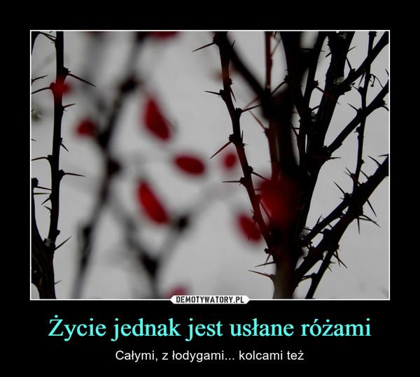 Życie jednak jest usłane różami – Całymi, z łodygami... kolcami też