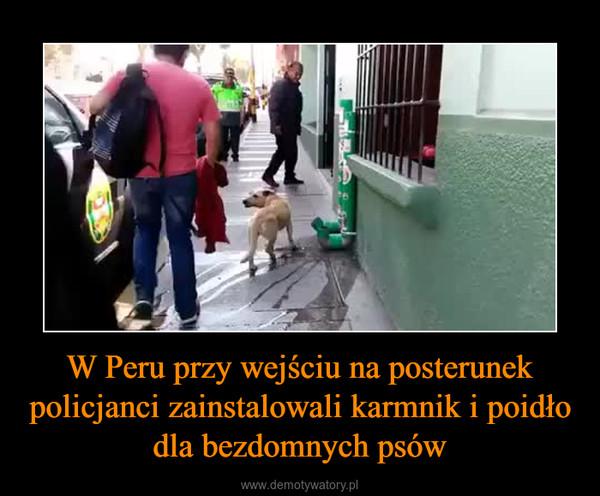 W Peru przy wejściu na posterunek policjanci zainstalowali karmnik i poidło dla bezdomnych psów –