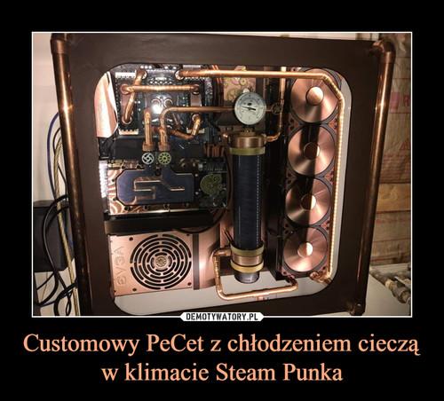 Customowy PeCet z chłodzeniem cieczą w klimacie Steam Punka