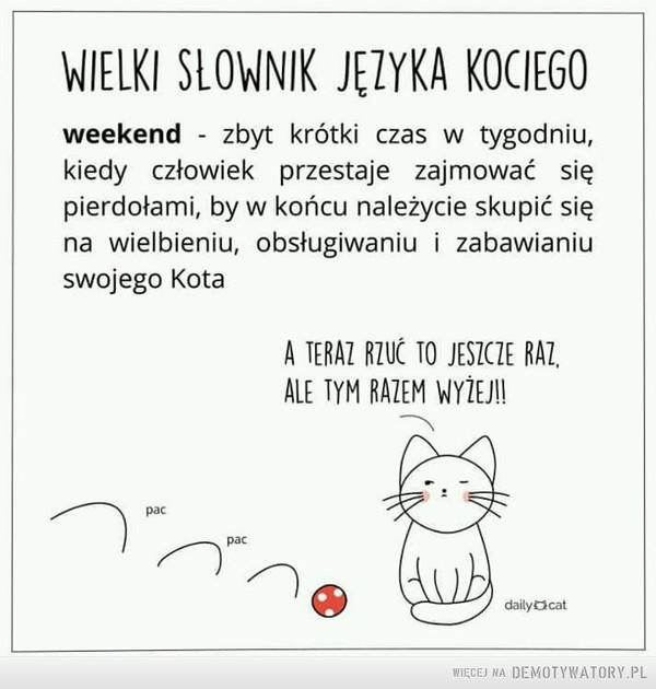 Weekend –  WIELKI SLOWNIK JĘZYKA KOCIEGOweekend - zbyt krótki czas w tygodniu,kiedy człowiek przestaje zajmować siępierdołami, by w końcu należycie skupić sięna wielbieniu, obsługiwaniu i zabawianiuswojego KotaA TERAZ RZUC TO JESICZE RAZ,ALE TYM RAZEM WYIEJ!