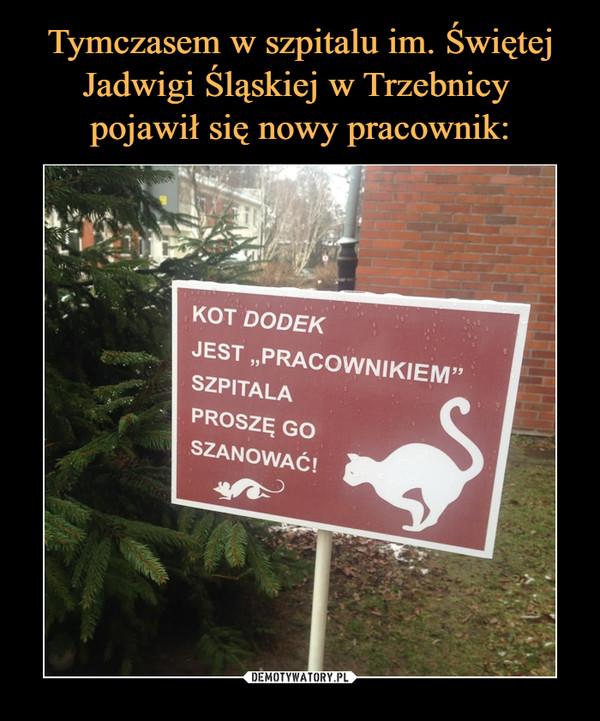 """–  KOT DODEK JEST """"PRACOWNIKIEM"""" SZPITALA PROSZĘ GO SZANOWAĆ!"""