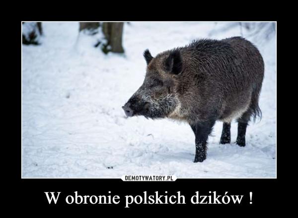 W obronie polskich dzików ! –