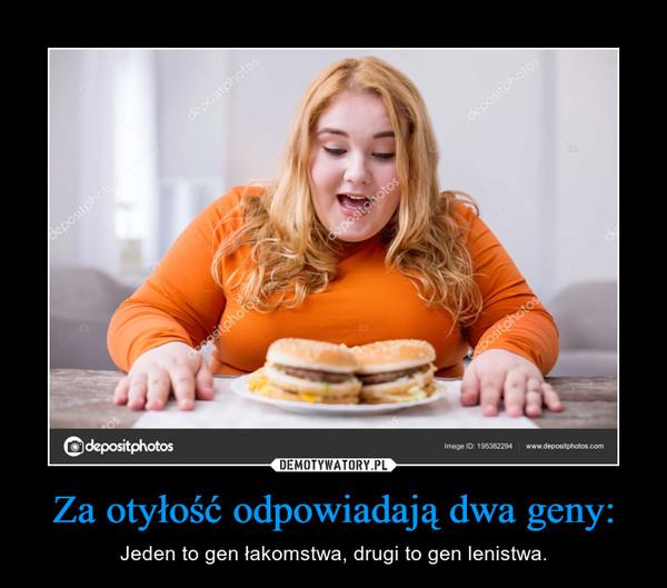 Za otyłość odpowiadają dwa geny: – Jeden to gen łakomstwa, drugi to gen lenistwa.