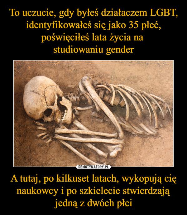 A tutaj, po kilkuset latach, wykopują cię naukowcy i po szkielecie stwierdzają jedną z dwóch płci –