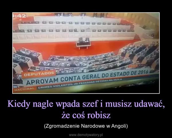 Kiedy nagle wpada szef i musisz udawać, że coś robisz – (Zgromadzenie Narodowe w Angoli)